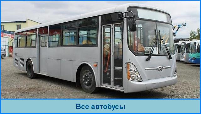 Автобусы для школьников
